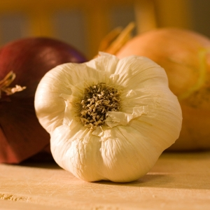 garlic natural tooth whiten